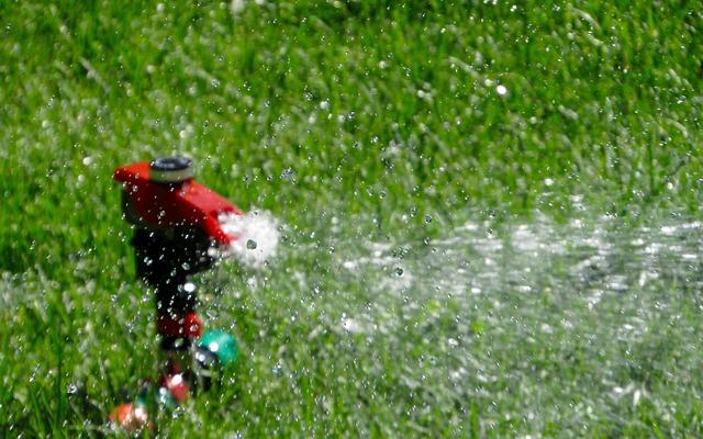 Sprinkler im Einsatz